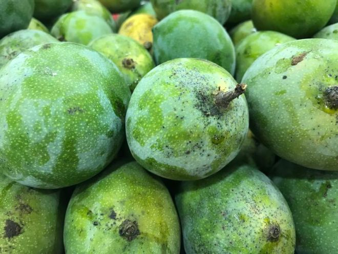 Mango Kalapadi